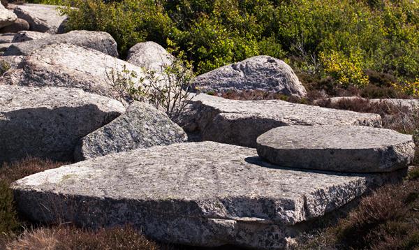 Trädgårdsdröm - sten i alla former