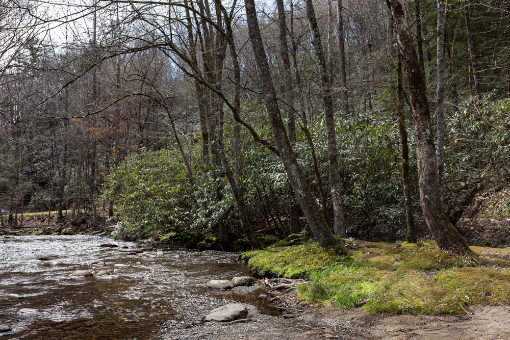 Oconaluftee river in Great Smoky Mountains