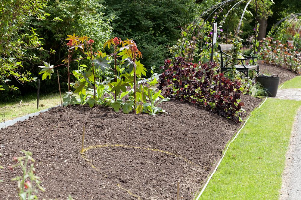 Nolltolerans i trädgården