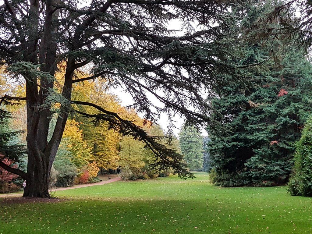 Trädgårdens vackraste vy - Parc de la Tëte d'Or
