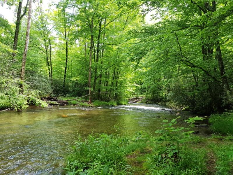 Creek - SmokyMountains
