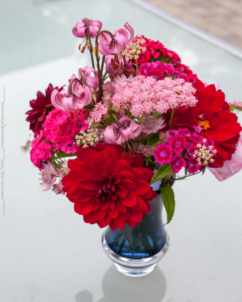fyrverkeri i rött och rosa