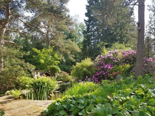 Naturlig trädgård