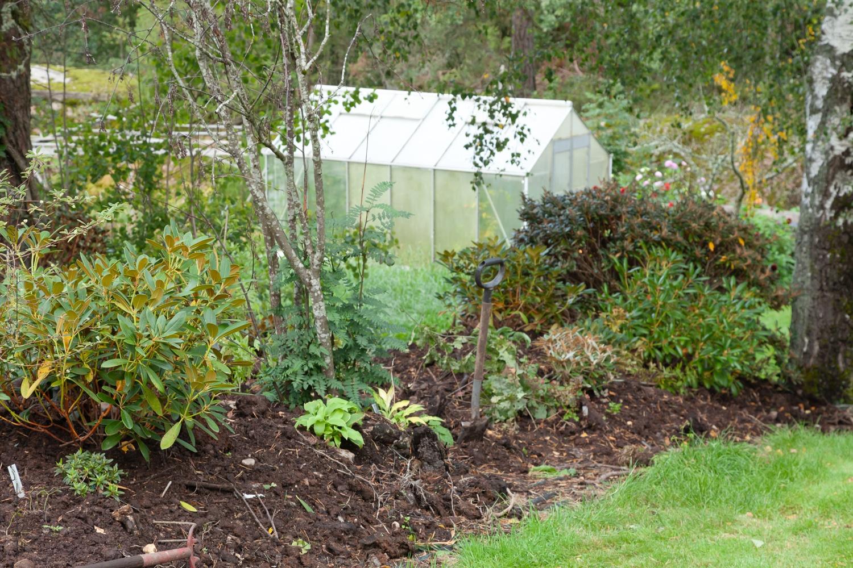 Östra lunden – trädgårdens delar