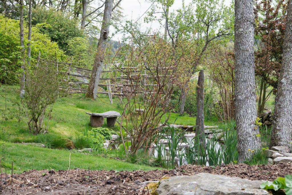 Rhododendron garden with stone work