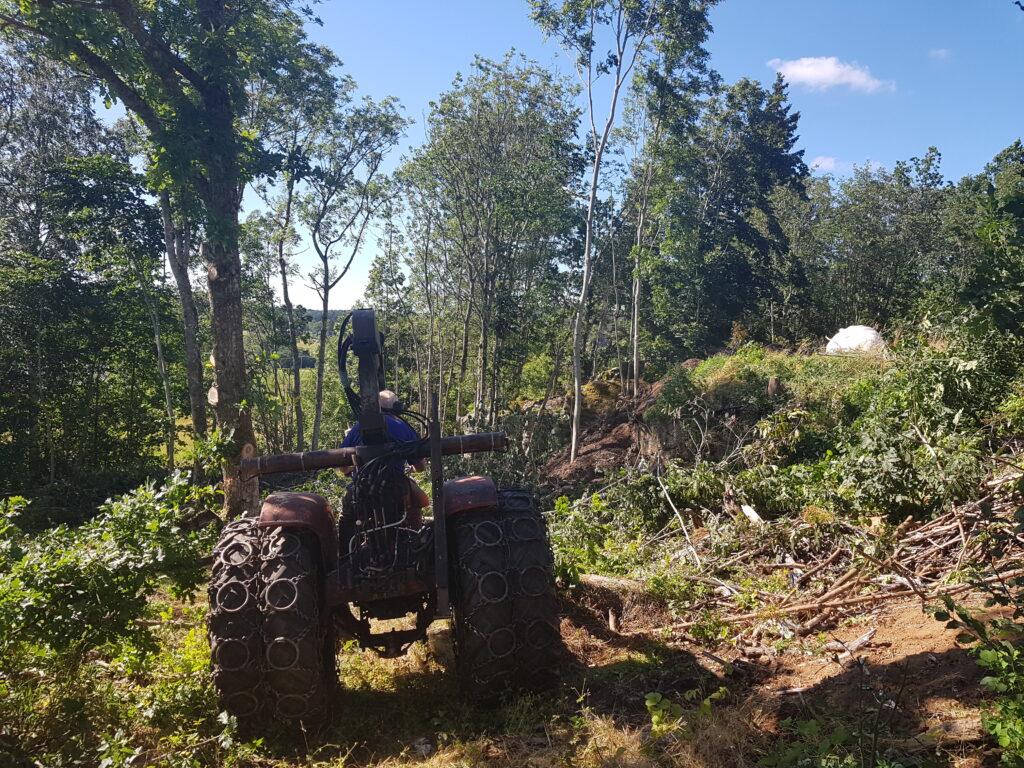 Arkeologisk utgrävning och trista beslut