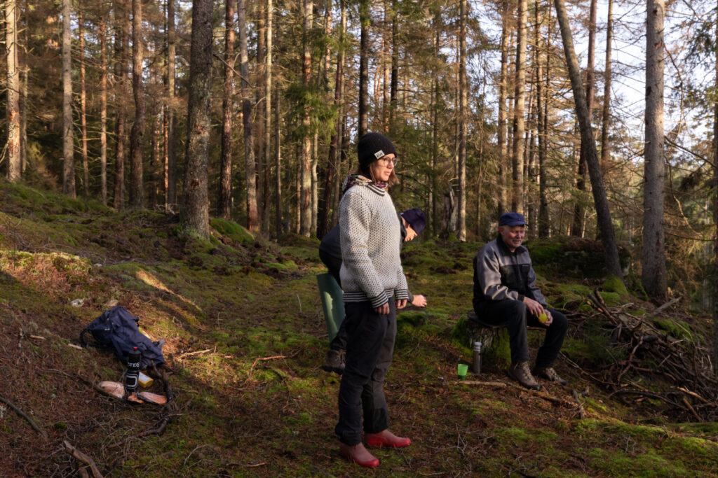 jultur till skogen